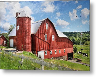 Big Red Metal Print by Lori Deiter