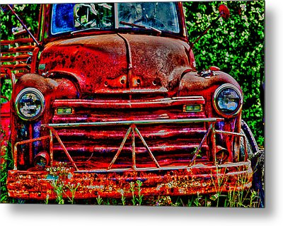Big Red  Metal Print