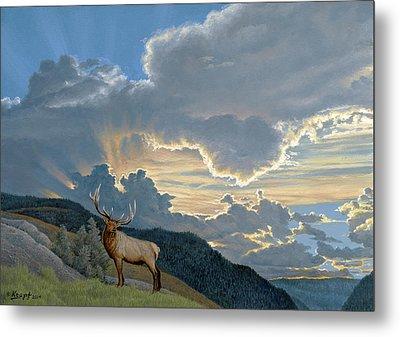 Big Sky-bull Elk Metal Print by Paul Krapf