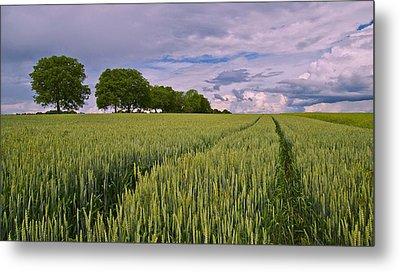 Big Sky Montana Wheat Field  Metal Print by Movie Poster Prints