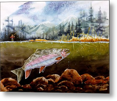 Big Thompson Trout Metal Print by Craig T Burgwardt
