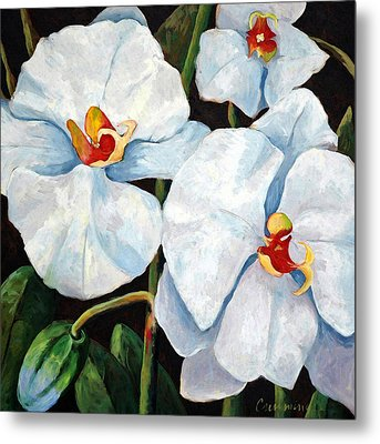 Big White Orchids - Floral Art By Betty Cummings Metal Print by Sharon Cummings
