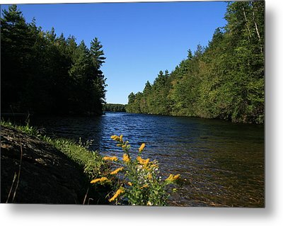 Metal Print featuring the photograph Bigelow Hollow  by Neal Eslinger