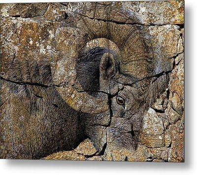 Bighorn Rock Art Metal Print by Steve McKinzie
