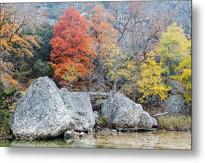 Bigtooth Maple And Rocks Fall Foliage Lost Maples Texas Hill Country Metal Print by Silvio Ligutti