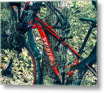 Bike By Wilderness  Metal Print by Steven Digman