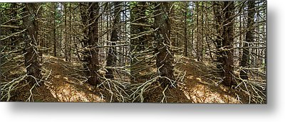 Billions Of Branches Metal Print