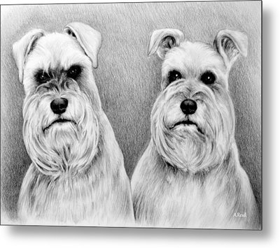 Billy And Misty Metal Print by Andrew Read