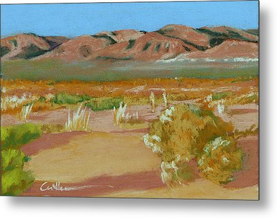 Billy Boy Territory Metal Print by Diane Cutter