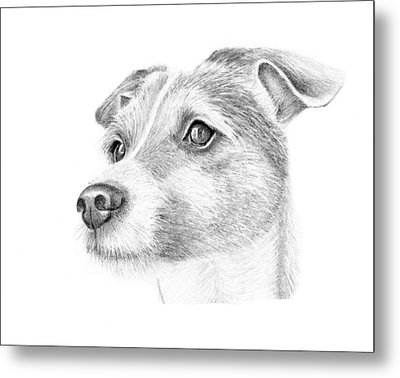 Billy Metal Print by Mary Mayes