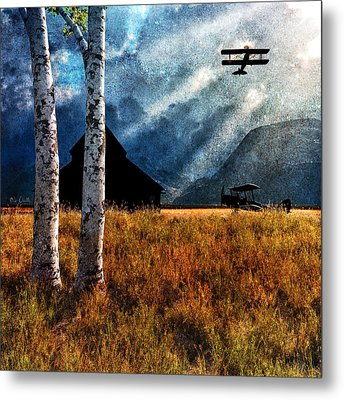 Birch Trees And Biplanes  Metal Print