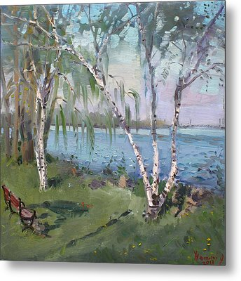 Birch Trees By The River Metal Print by Ylli Haruni