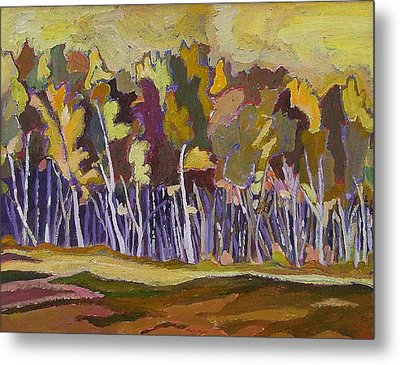 Birches In Autumn Metal Print by Janet Ashworth