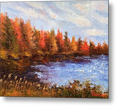 Birchwood Lake Metal Print