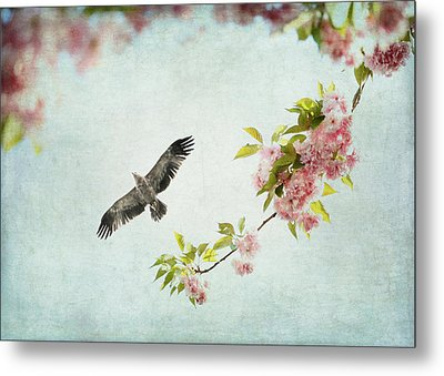 Bird And Pink And Green Flowering Branch On Blue Metal Print by Brooke T Ryan