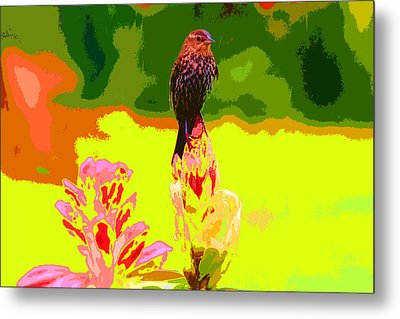 Bird And Rhodie Metal Print