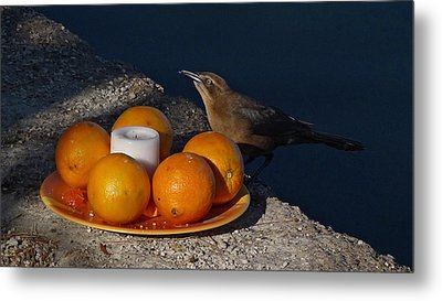 Bird Banquet Metal Print