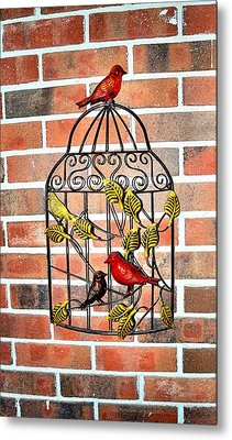 Bird Cage Decor Metal Print