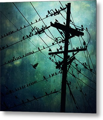 Bird City Metal Print