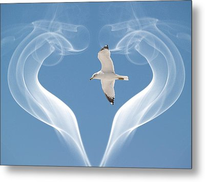 Metal Print featuring the photograph Bird In Flight by Athala Carole Bruckner