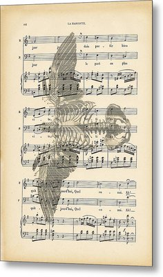 Bird Music Metal Print