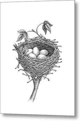 Bird Nest Metal Print by Christy Beckwith
