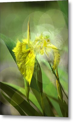 Metal Print featuring the photograph Bird Of Iris by Adria Trail