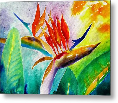 Bird Of Paradise Metal Print by Carlin Blahnik