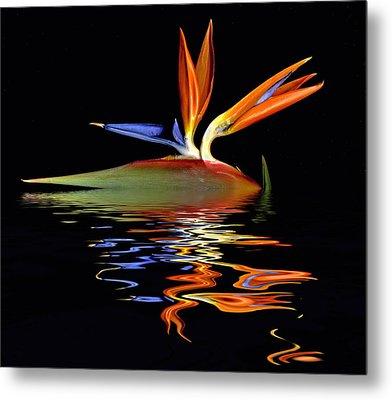Bird Of Paradise Flood Metal Print
