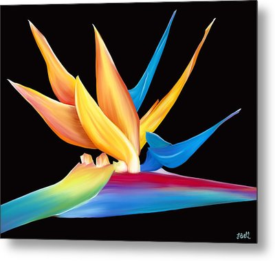 Bird Of Paradise Metal Print by Laura Bell