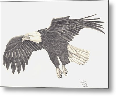Metal Print featuring the drawing Bird Of Prey by Patricia Hiltz