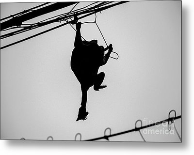 Bird On A Wire Metal Print by Dean Harte