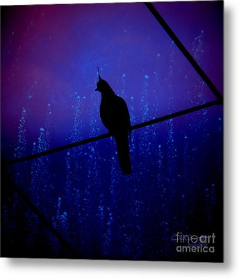 Bird On The Wire ... Metal Print