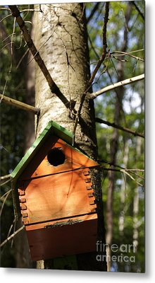 Birdhouse By Line Gagne Metal Print by Line Gagne