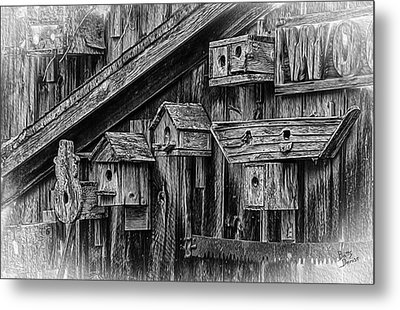 Birdhouse Collection Metal Print by Betty Denise