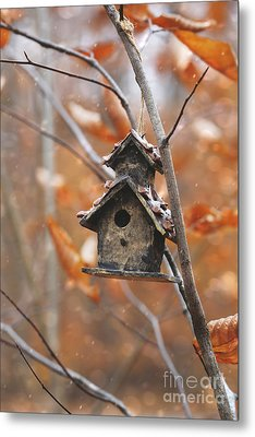 Metal Print featuring the photograph Birdhouse Hanging On Branch With Leaves by Sandra Cunningham