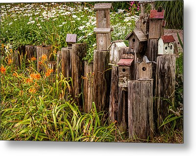 Birdhouses Beside A Country Road Metal Print