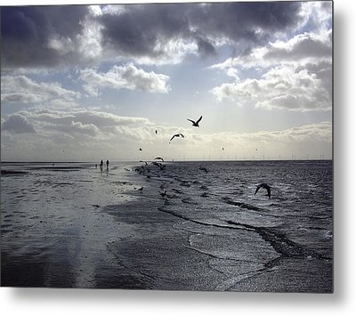 Birds At The Beach 2 Metal Print