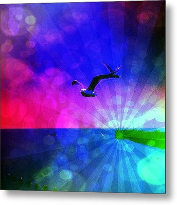 Birds Metal Print by Chris Drake