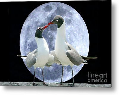 Metal Print featuring the photograph Birds Do It... by Mariarosa Rockefeller