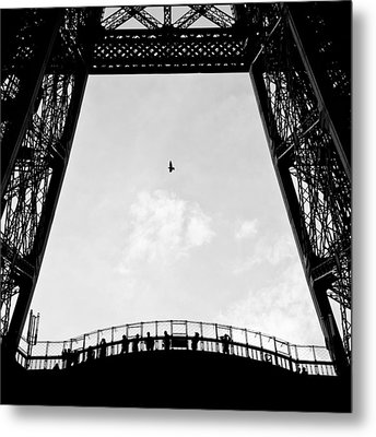 Birds-eye View Metal Print
