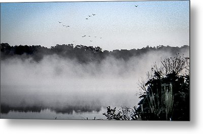 Birds Fly Above The Steamy Lake Metal Print by Christy Usilton