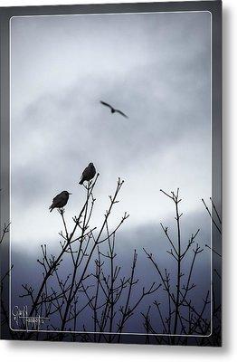 Birds For Breakfast Metal Print