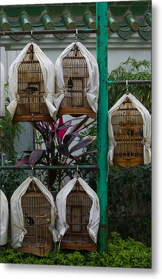 Birds In Cages For Sale At A Bird Metal Print