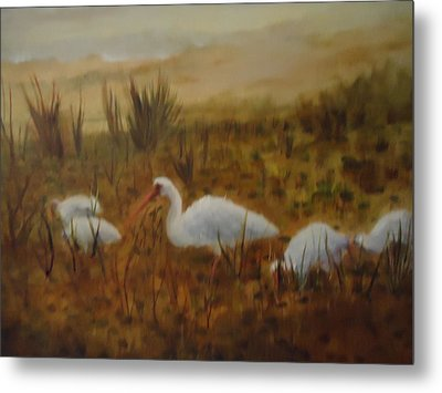Birds In The Marshes Metal Print by Betty Pimm