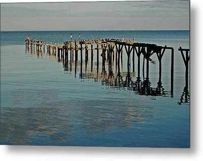 Birds On Old Dock On The Bay Metal Print by Michael Thomas