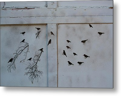 Birds On The Garage Metal Print