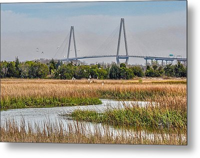 Birds Play Metal Print by Donnie Smith