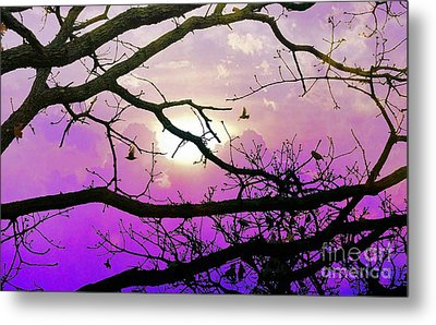 Birds Roosting For Night Metal Print