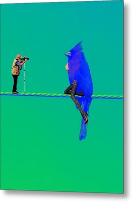 Metal Print featuring the painting Birdwatcher by David Mckinney